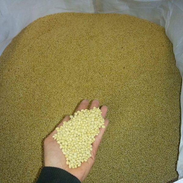 Soy from Bulgaria in Bigbag; Production, distribution and trade with Soy and Soy beans in European Union; GMO free soy; (3)